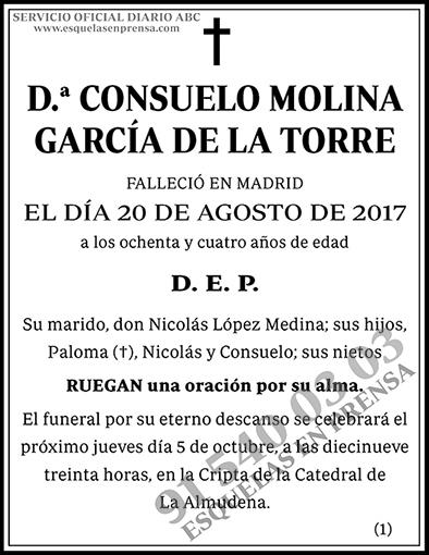 Consuelo Molina García de la Torre